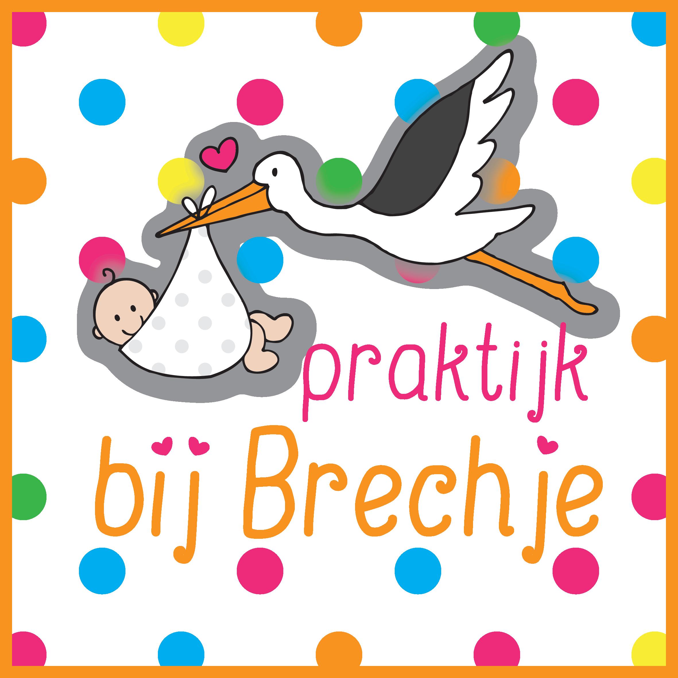 Logo Praktijk bij Brechje